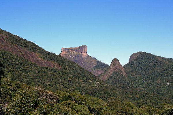 things-to-do-in-rio-de-janeiro-tijuca-national-park